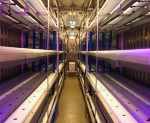 Hydroponic farm manufactured by repurposing 40 foot shipping containers