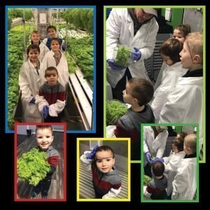 Aleutian Greens Farm Tour